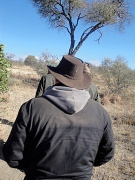 Rhino walk in the bush