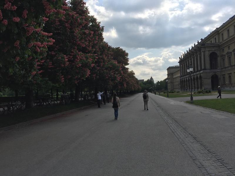 Park through the Hofgarten