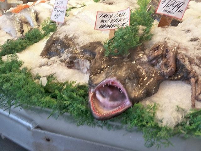 Ugly Monkfish