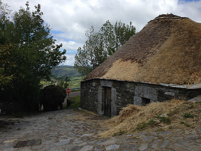 Low thatched roof