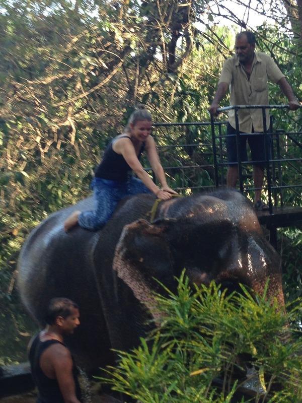 Me elephant shower