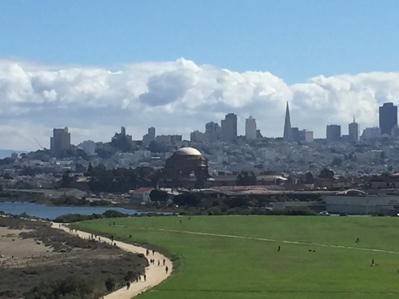 Dome of Palace of Fine Arts with city behind