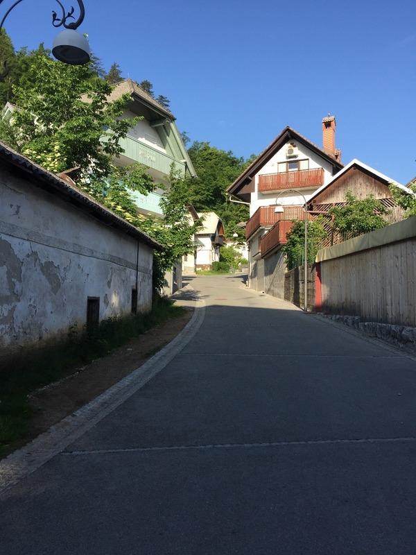 Early morning walk around my street
