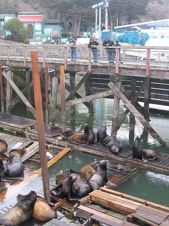 Brad & Nath watching the seals