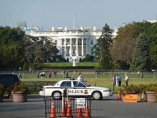 White house lawns