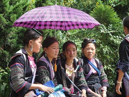 Hmong guides & sellers
