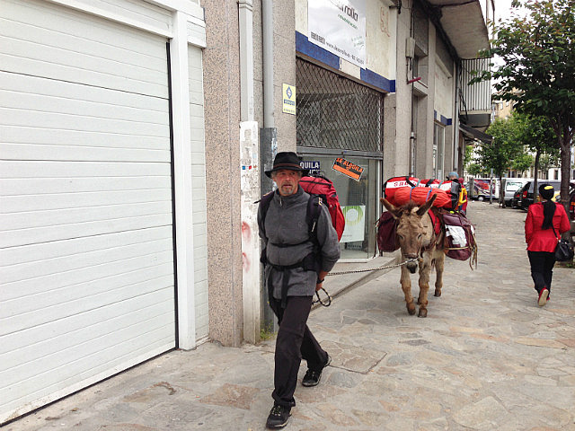 Man and his donkey arrive into town