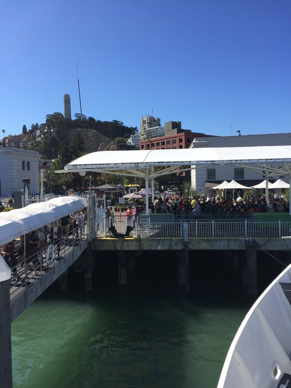 Alcatraz Ferry station with Coit Tower behind