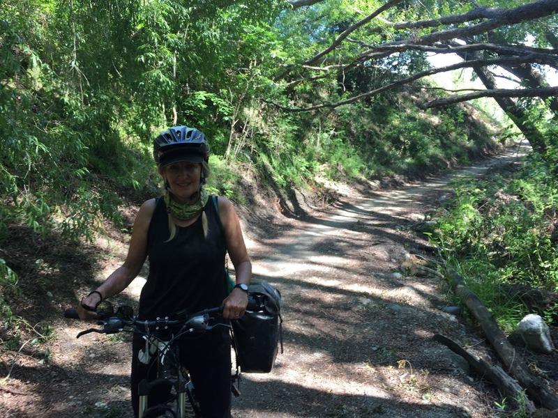 Shady trail to Alexandra