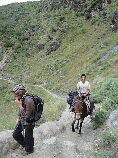 Delfina & the horseman cheating