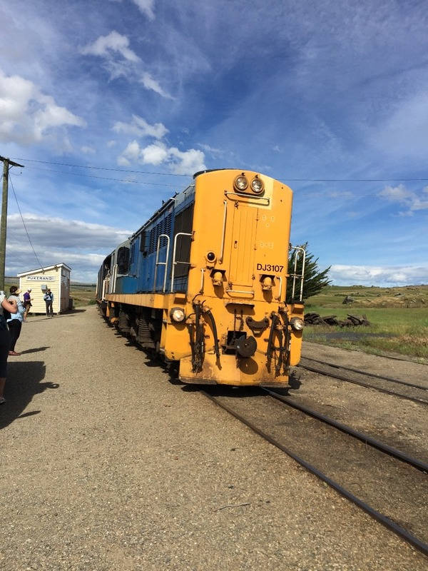 Taieri train arrives in