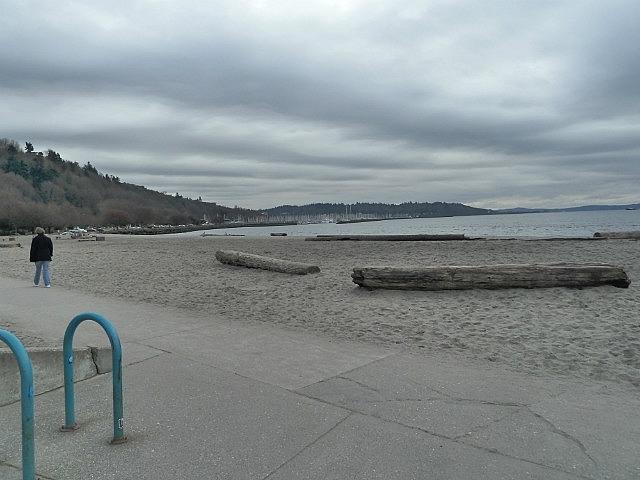 Beach on Puget sound