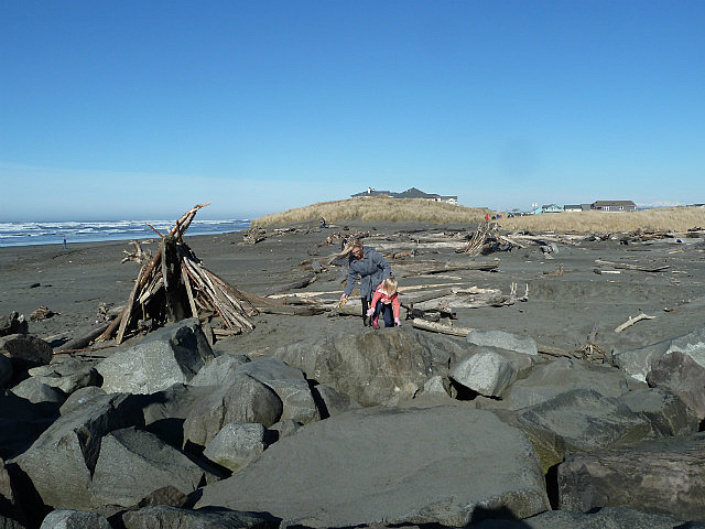 Beach with black sand and logs