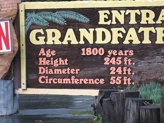 Grandfather stats