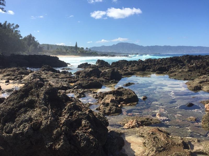 Shark Cove to Waimea Bay