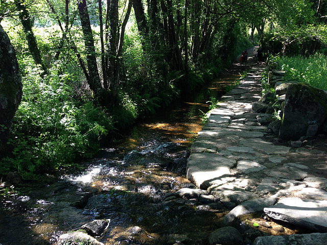 Clear rushing stream