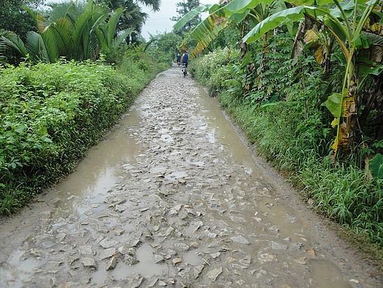 Really muddy bumpy road!