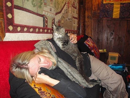 Another kitten loving me