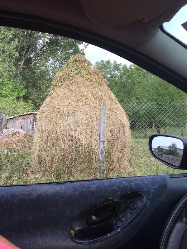 Romanian haystack