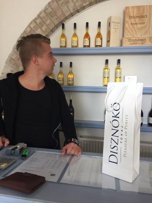 Disznoko winery