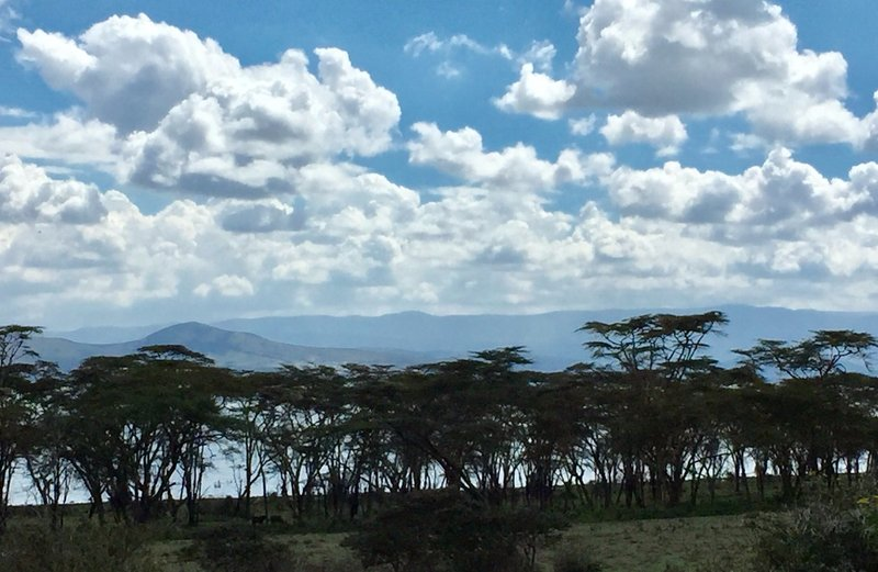 View of Lake Naivasha from Crescent Island