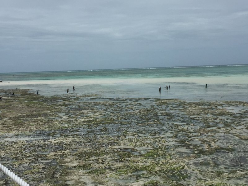 Nungwi beach with tide out