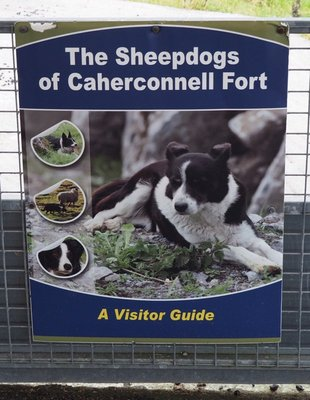 Caherconnell advertisement