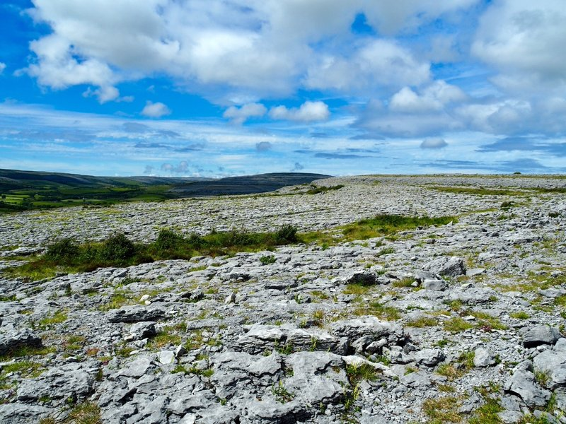 Out on The Burren
