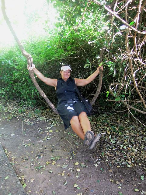 Natural swing Vic Falls
