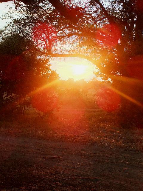 Sunset Moreme