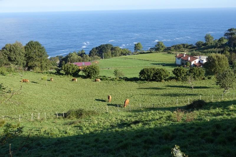 Rural scene - between San Sebastian and Zarautz
