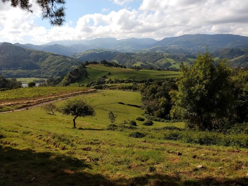 Rural scene near Orio (between San Sebastian and Zarautz)
