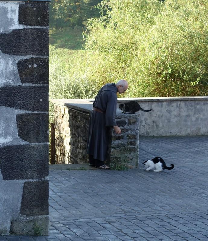 Monk feeding cats - Ziortza Monastery