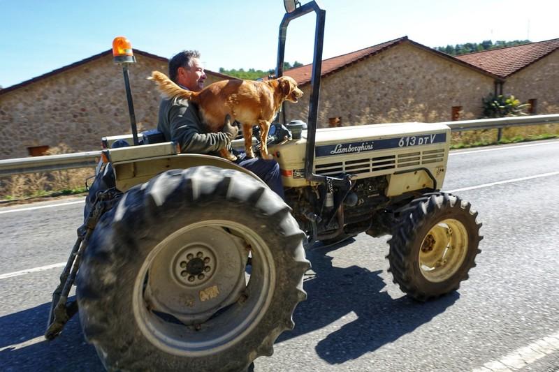 Driving a Lamborghini (tractor) with your best friend - Elciego, Rioja region