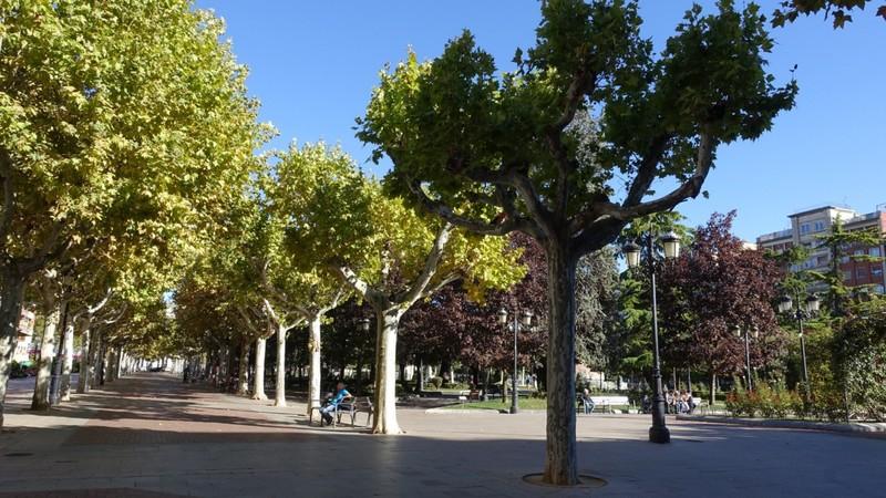 Logrono city square