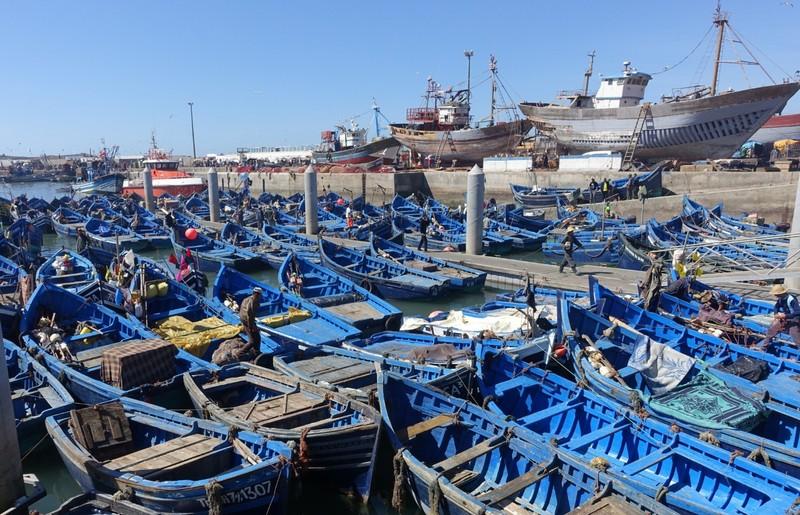 Fishing boats - Essaouira