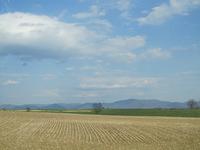 Shenandoah Mtns. in background