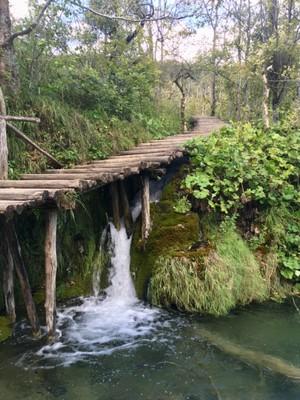 Waterfalls under the boardwalk