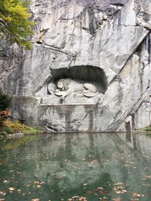Lucerne lion