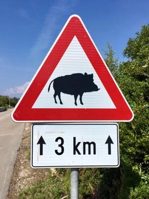 Cycling hazard!