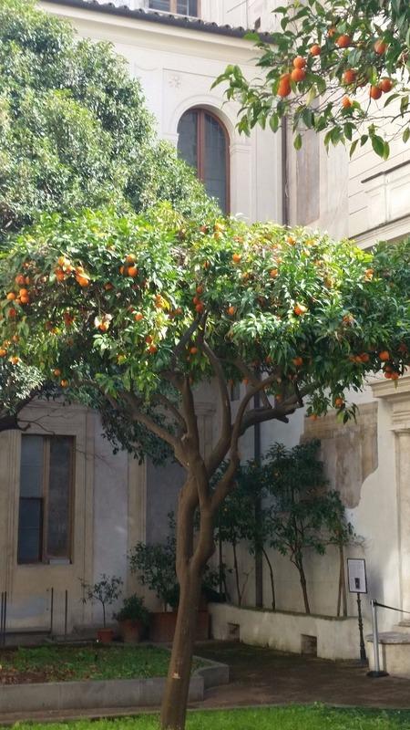 Palazzo Spada courtyard