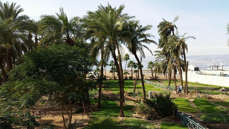 Aqaba Views