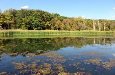Kendall Lake