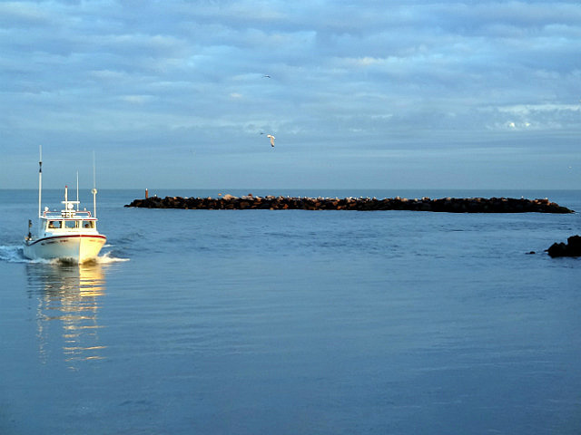 Oyster Boat Returns at Sunset