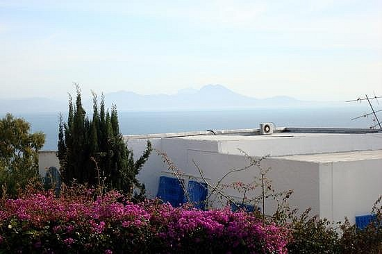 Sidi Bou Said Garden Rooftop View