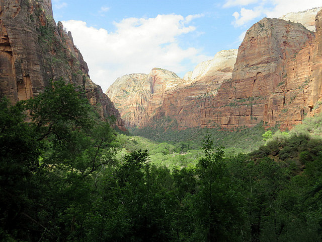 View from Weeping Rock Trail
