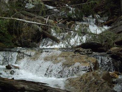 Below Hamilton Falls