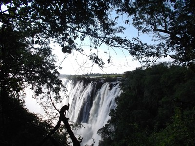 Early morning Victoria Falls
