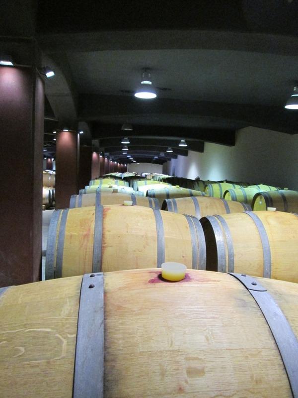 Oak barrels of wine
