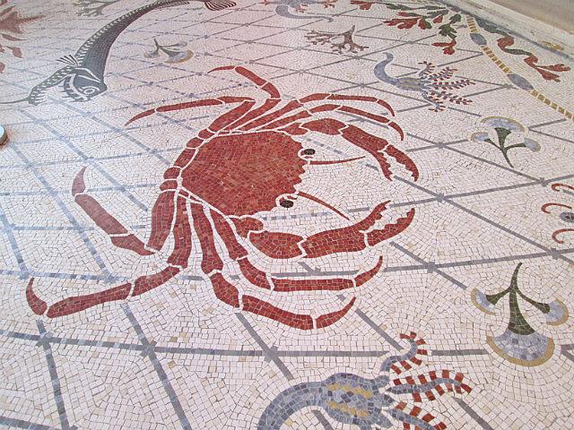 Floor tiles in the Oceanographic Museum